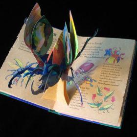 Young Naturalist's Pop-Up Handbook: Beetles